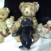 Steiff bears from Germany!
